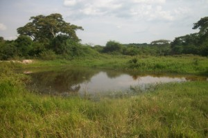 The Water Project : uganda6036-previous-source