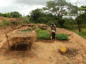 The Water Project : kenya4040-28-farming