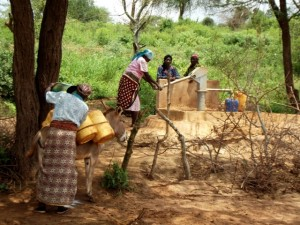 The Water Project : kenya4041-16