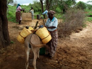 The Water Project : kenya4041-19