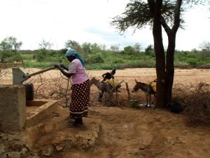 The Water Project : kenya4041-21