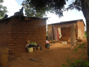 The Water Project : kenya4297-28-second-members-houses-and-children
