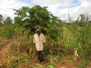 The Water Project : kenya4299-06-first-members-farm
