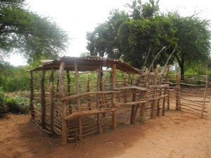 The Water Project : kenya4299-07-first-members-goat-shed