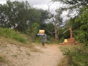 The Water Project : kenya4301-13-second-member-carries-water-home
