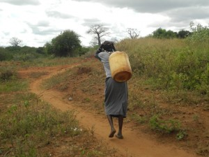 The Water Project : kenya4301-15-second-member-carries-water-home
