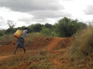 The Water Project : kenya4301-16-second-member-carries-water-home