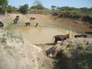 The Water Project : uganda6052-24