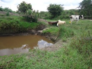 The Water Project : uganda6056-03-previous-water-source