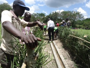 The Water Project : uganda6056-13-community-cleaning-around-the-source