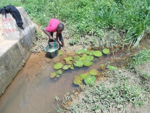 The Water Project : sierraleone5056-01-old-water-source