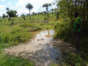 The Water Project : sierraleone5058-01-old-water-source