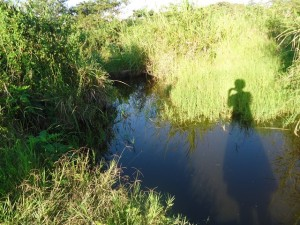The Water Project : uganda677-01