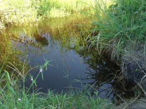 The Water Project : uganda677-02
