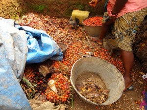 The Water Project : sierra-leone5066-22-kitchen-area-making-palm-oil-these-are-the-banga-nuts-that-get-mashed