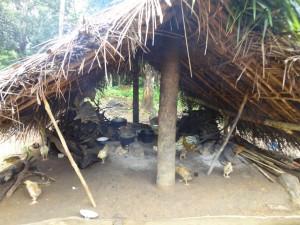 The Water Project : sierra-leone5072-06-kitchen-area