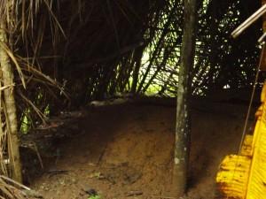 The Water Project : sierra-leone5074-23-native-toilet-1-inside