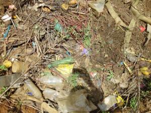 The Water Project : sierraleone5071-25