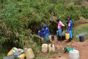 The Water Project : kenya4451-06-fetching-water-from-a-stream