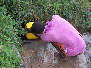 The Water Project : sierraleone5067-01-alternate-water-source-swamp
