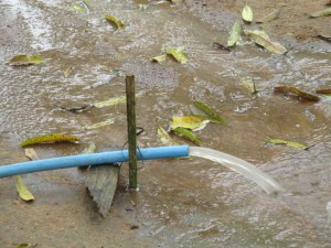 The Water Project : sierraleone5075-40-yield-testing