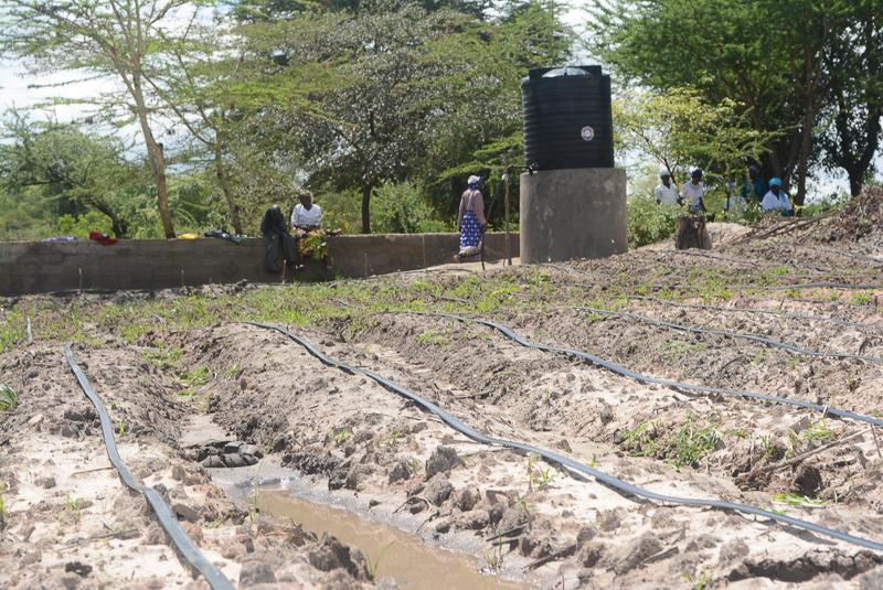Water Tank Irrigation System : The water project kenya vinya wa mwau drip irrigation