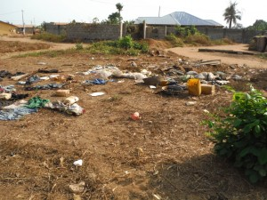 The Water Project : 13-sierraleone5079-site-before-cleaning