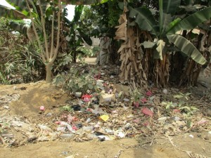 The Water Project : 9-sierraleone5081-compost-pit
