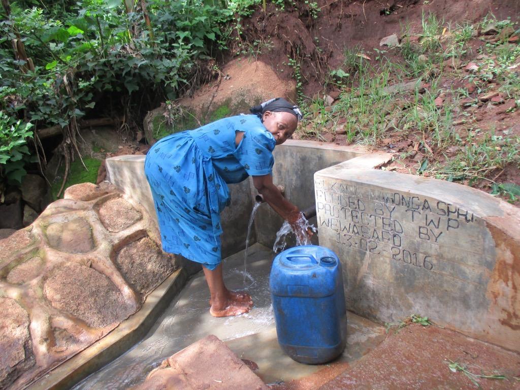 Elkana Mahonga Spring Protection Project