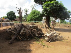 The Water Project : 13-sierraleone5088-wood-for-smoking-fish