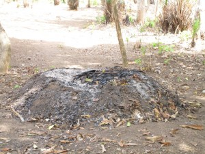 The Water Project : 15-sierraleone5089-compost-pit