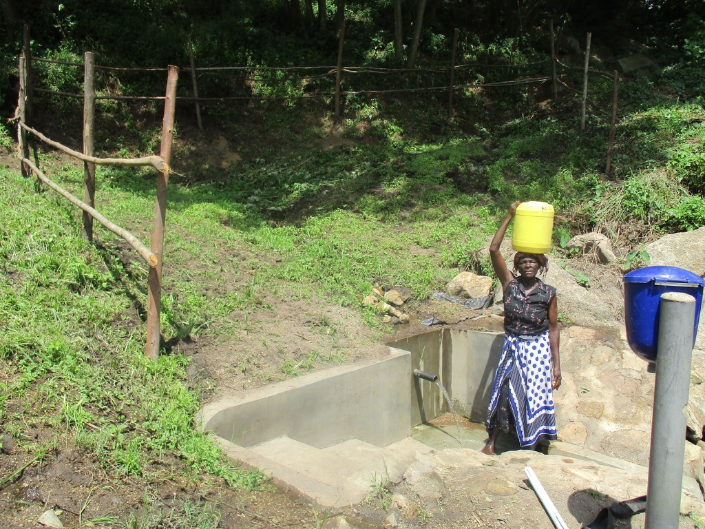 Emusioma Spring Protection Project