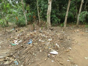 The Water Project : 6-sierraleone5100-garbage-pit