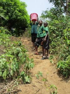 The Water Project : 8-sierraleone5099-current-source
