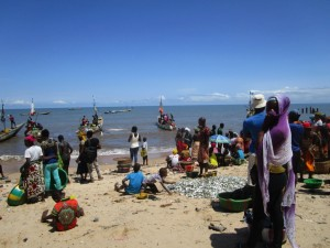 The Water Project : 8-sierraleone5085-training