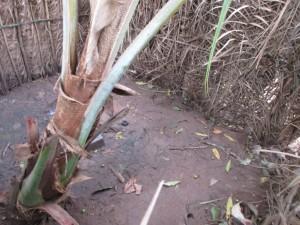 The Water Project : 6-sierraleone5091-bathing-room