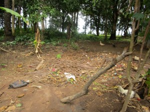 The Water Project : 14-sierraleone5090-garbage-pit