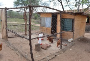 The Water Project : 5-kenya4504-chicken-coop