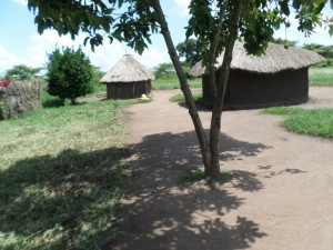 The Water Project : 5-uganda6068-homestead