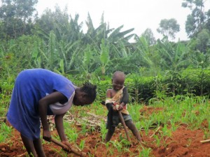 The Water Project : 10-kenya4591-farming