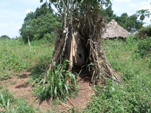 The Water Project : 7-uganda6075-latrine