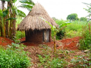 The Water Project : 8-uganda6073-household
