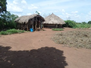 The Water Project : 9-uganda6075-village