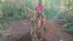 The Water Project : 11-uganda6074-compost-pit