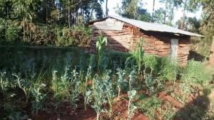 The Water Project : 14-kenya4640-school-kitchen