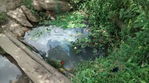 The Water Project : 2-uganda6074-unprotected-spring