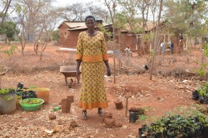 The Water Project : 20-kenya4499-garden