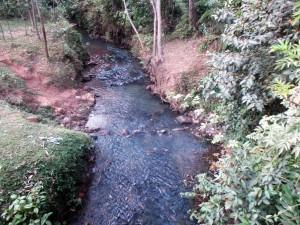 The Water Project : 3-kenya4643-wamu-stream-water-source