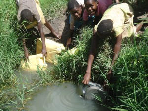 The Water Project : 3-uganda6078-fetching-water