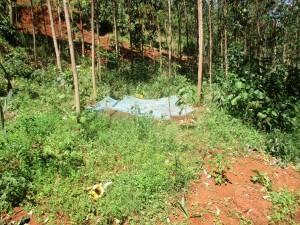 The Water Project : 13-kenya4703-landscape